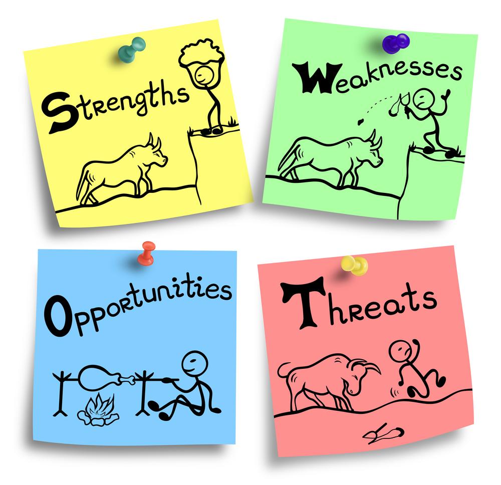 Avalie os ambientes interno e externo para os seus planos de negócios